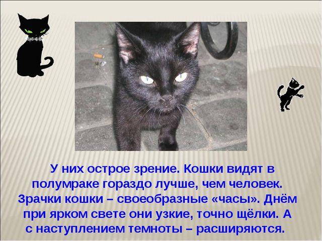 У них острое зрение. Кошки видят в полумраке гораздо лучше, чем человек. Зра...