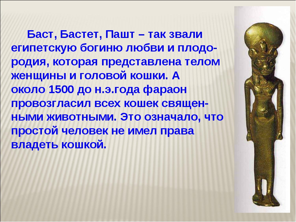 Баст, Бастет, Пашт – так звали египетскую богиню любви и плодо-родия, котора...