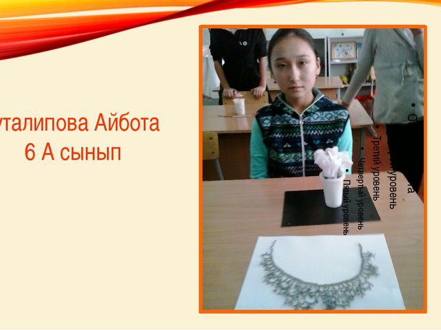 Абуталипова Айбота 6 А сынып