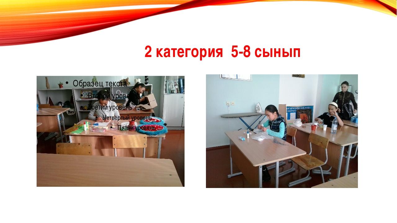 2 категория 5-8 сынып
