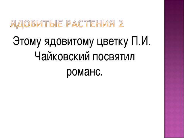 Этому ядовитому цветку П.И. Чайковский посвятил романс.