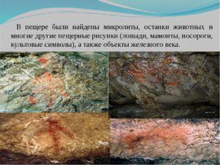 В пещере были найдены микролиты, останки животных и многие другие пещерные ри