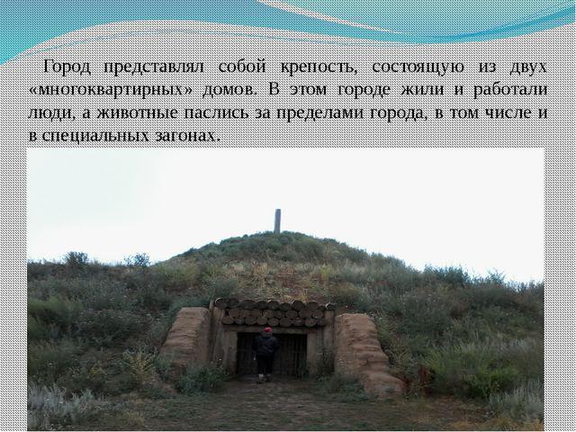 Город представлял собой крепость, состоящую из двух «многоквартирных» домов....