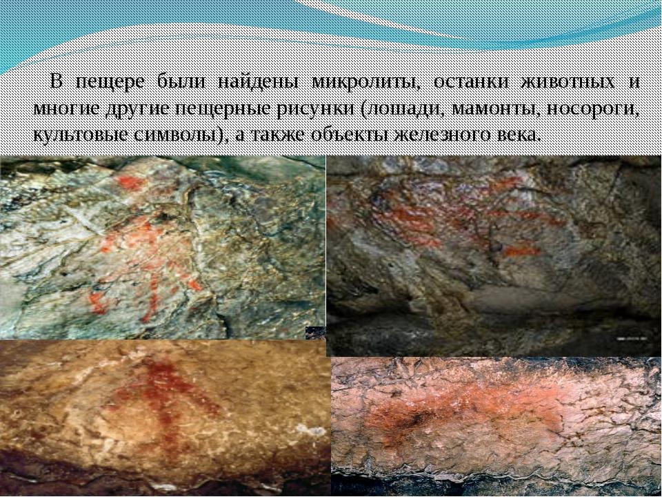 В пещере были найдены микролиты, останки животных и многие другие пещерные ри...