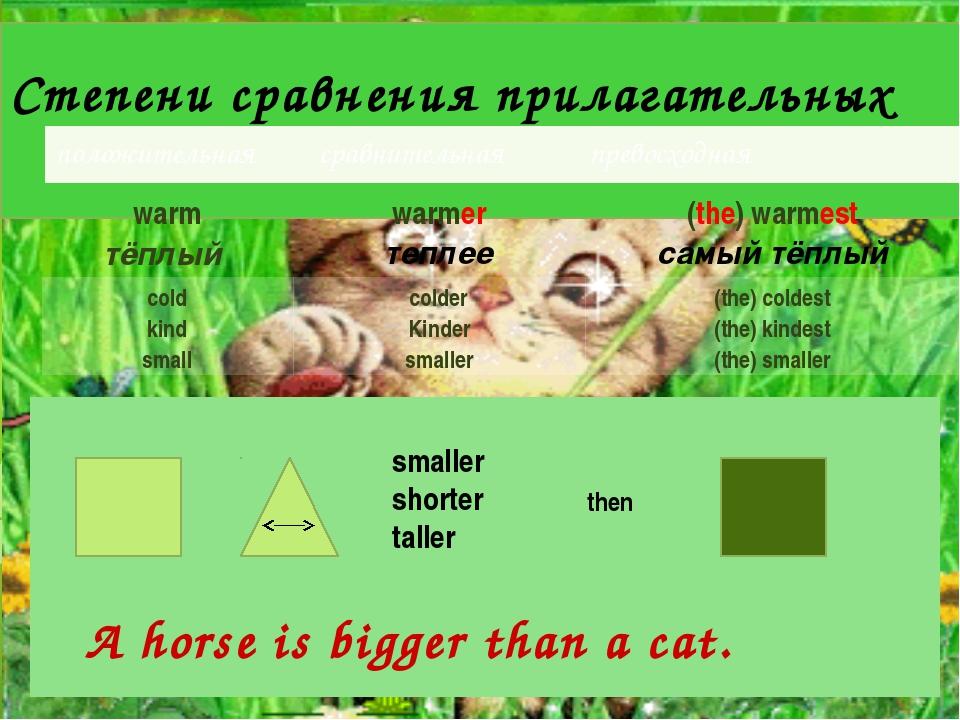 Степени сравнения прилагательных smaller shorter taller then A horse is bigg...