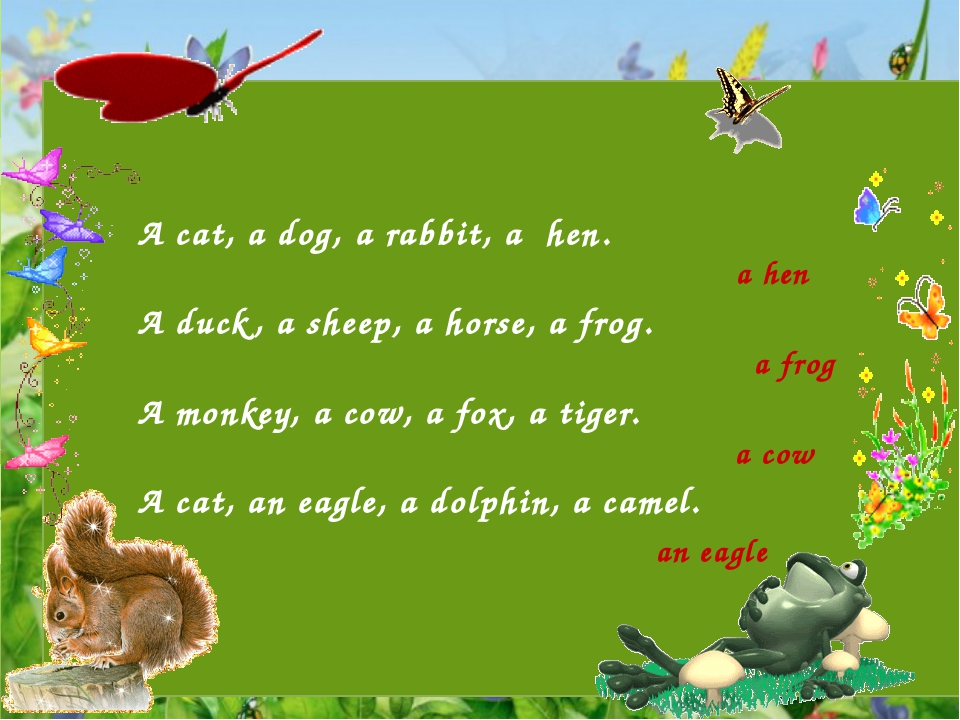 A cat, a dog, a rabbit, a hen.   A duck, a sheep, a horse, a frog.   A monke...