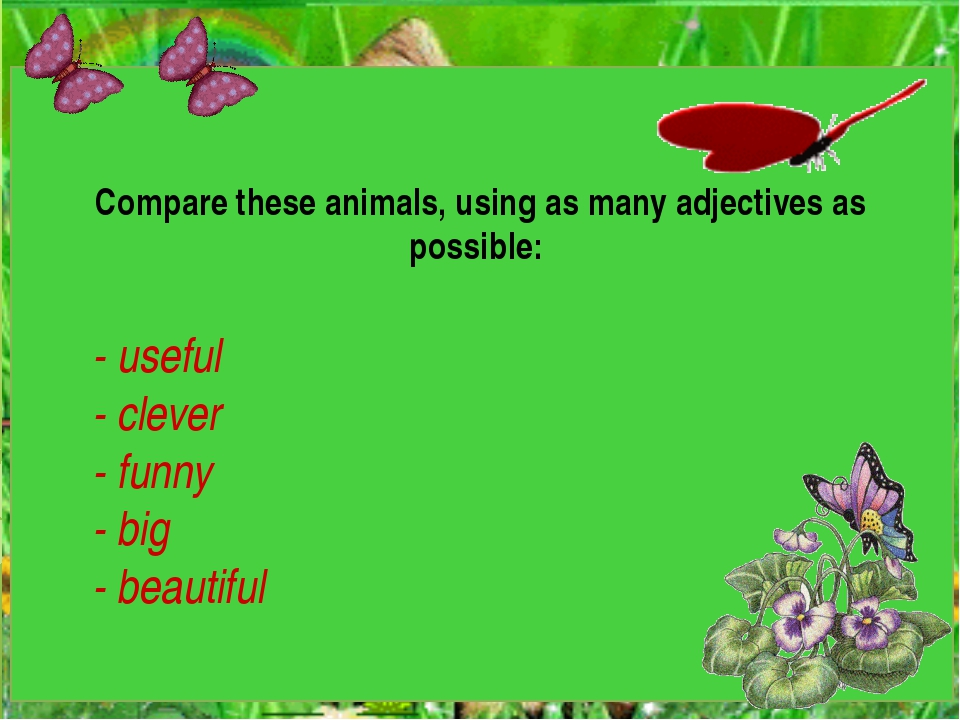 Compare these animals, using as many adjectives as possible: - useful - clev...