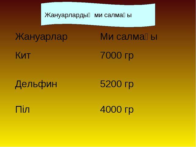 Жануарлардың ми салмағы ЖануарларМи салмағы Кит7000 гр Дельфин5200 гр Піл...