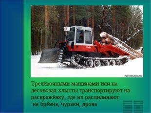 Трелёвочными машинами или на лесовозах хлысты транспортируют на раскряжёвку,