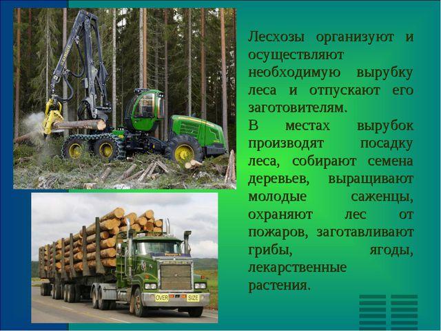 Лесхозы организуют и осуществляют необходимую вырубку леса и отпускают его за...