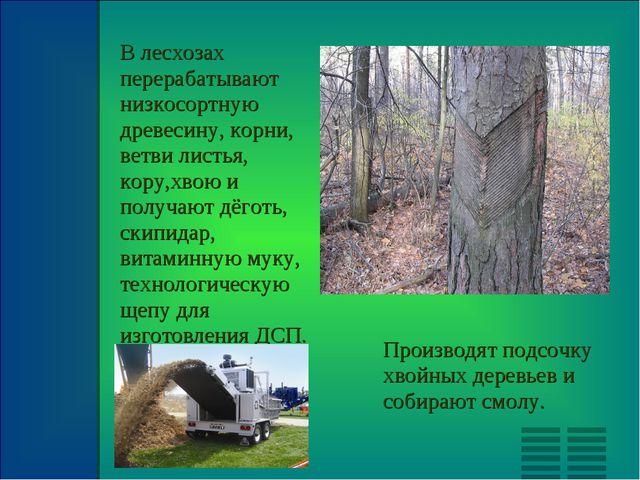В лесхозах перерабатывают низкосортную древесину, корни, ветви листья, кору,х...