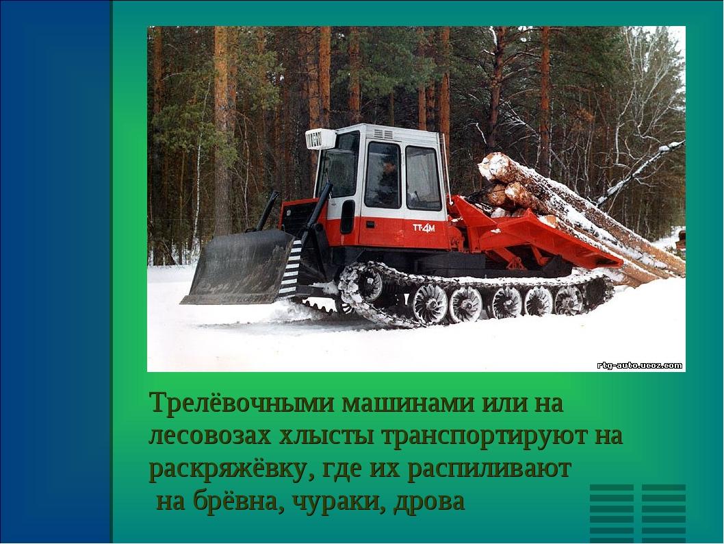 Трелёвочными машинами или на лесовозах хлысты транспортируют на раскряжёвку,...
