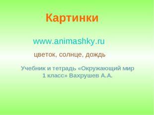 Картинки www.animashky.ru цветок, солнце, дождь Учебник и тетрадь «Окружающий