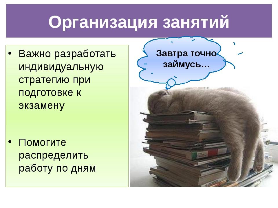 Важно разработать индивидуальную стратегию при подготовке к экзамену Помогите...