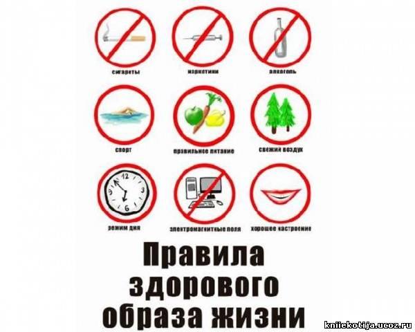 http://kniiekotija.ucoz.ru/_fr/1/2295204.jpg