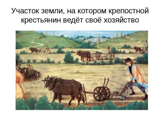 Участок земли, на котором крепостной крестьянин ведёт своё хозяйство
