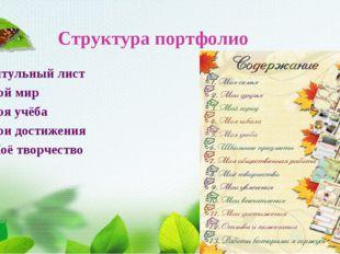 Структура портфолио Титульный лист Мой мир Моя учёба Мои достижения Моё творч