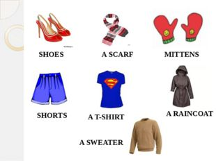 SHOES MITTENS A SCARF A SWEATER SHORTS A T-SHIRT A RAINCOAT