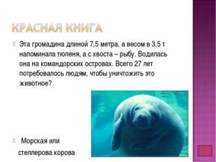 Эта громадина длиной 7,5 метра, а весом в 3,5 т напоминала тюленя, а с хвоста