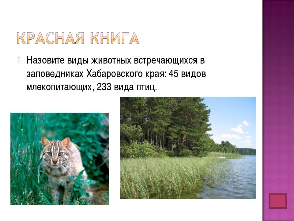 Назовите виды животных встречающихся в заповедниках Хабаровского края: 45 вид...