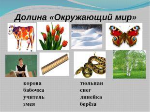 Долина «Окружающий мир» корова бабочка учитель змея тюльпан снег линейка берёза
