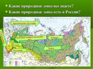 Какие природные зоны вы знаете? Какие природные зоны есть в России? Арктическ