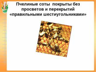 Пчелиные соты покрыты без просветов и перекрытий «правильными шестиугольниками»