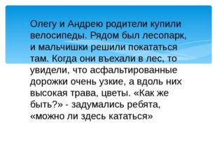 Олегу и Андрею родители купили велосипеды. Рядом был лесопарк, и мальчишки ре