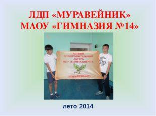 ЛДП «МУРАВЕЙНИК» МАОУ «ГИМНАЗИЯ №14» лето 2014