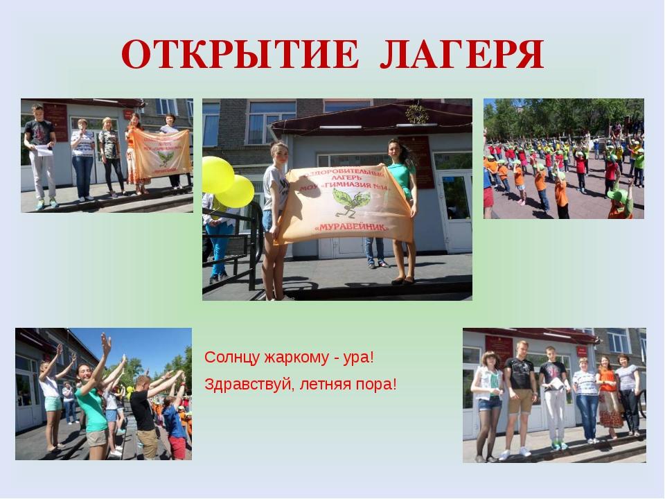 Сценарий открытия летней кампании