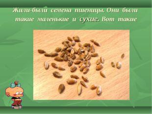 Жили-были семена пшеницы. Они были такие маленькие и сухие. Вот такие