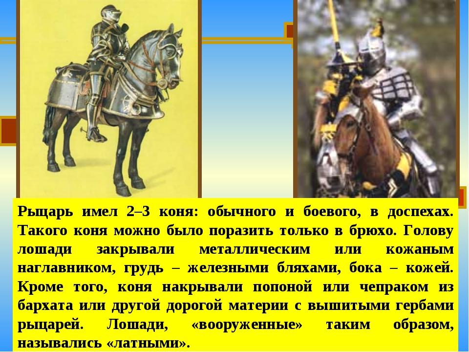 Рыцарь имел 2–3 коня: обычного и боевого, в доспехах. Такого коня можно было...