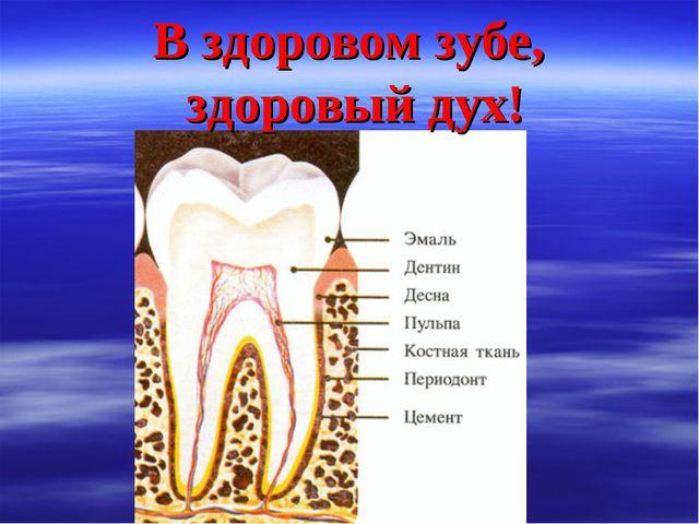 В здоровом зубе, здоровый дух!