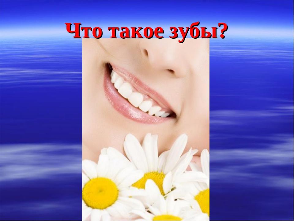 Что такое зубы?