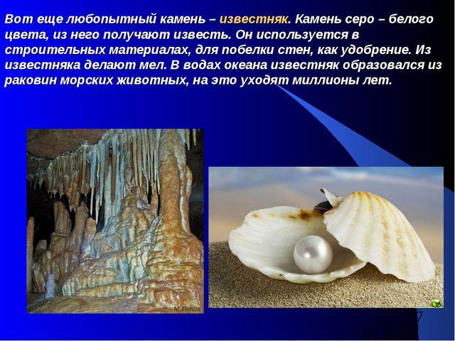 Вот еще любопытный камень – известняк. Камень серо – белого цвета, из него по...