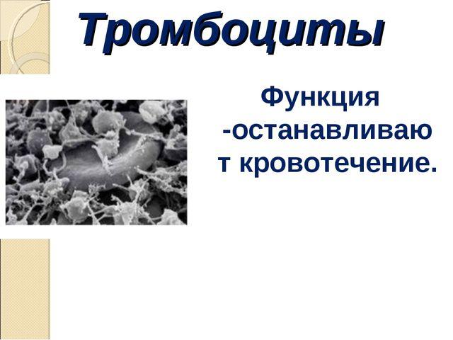 Тромбоциты Функция -останавливают кровотечение.