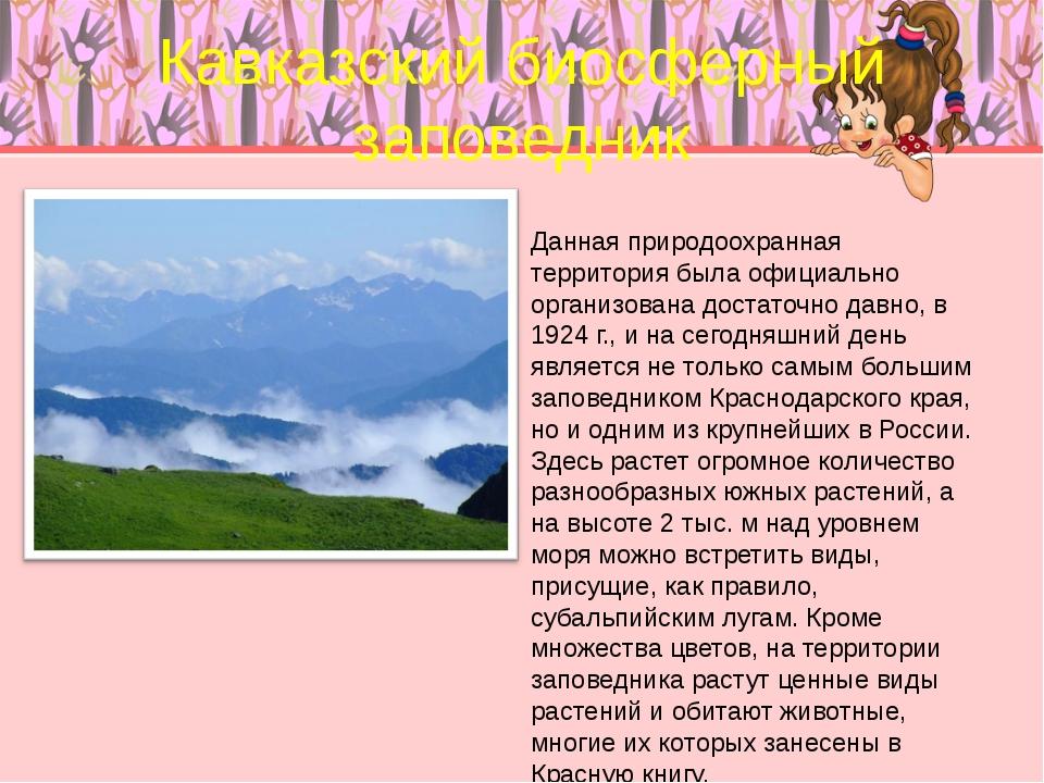 Кавказский биосферный заповедник Данная природоохранная территория была офици...
