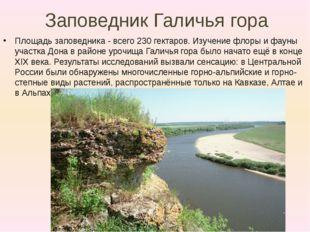 Заповедник Галичья гора Площадь заповедника -всего 230 гектаров. Изучение фл