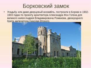 Борковский замок Усадьбу, или даже дворцовый ансамбль, построили в Борках в 1