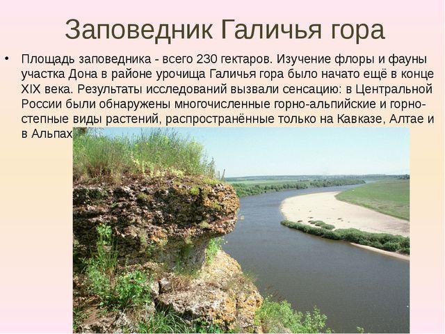 Заповедник Галичья гора Площадь заповедника -всего 230 гектаров. Изучение фл...