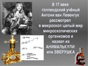 В 17 веке голландский учёный Антони ван Левенгук рассмотрел в микроскоп целый