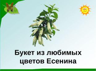 Букет из любимых цветов Есенина