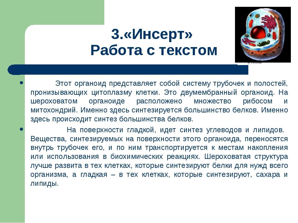 3.«Инсерт» Работа с текстом Этот органоид представляет собой систему трубочек...