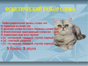 ) Орфографическая запись слова: кот 2) Ударение в слове: кот 3) Деление слова