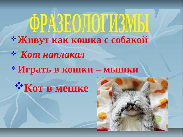 Живут как кошка с собакой   Кот наплакал Играть в кошки – мышки Кот в...