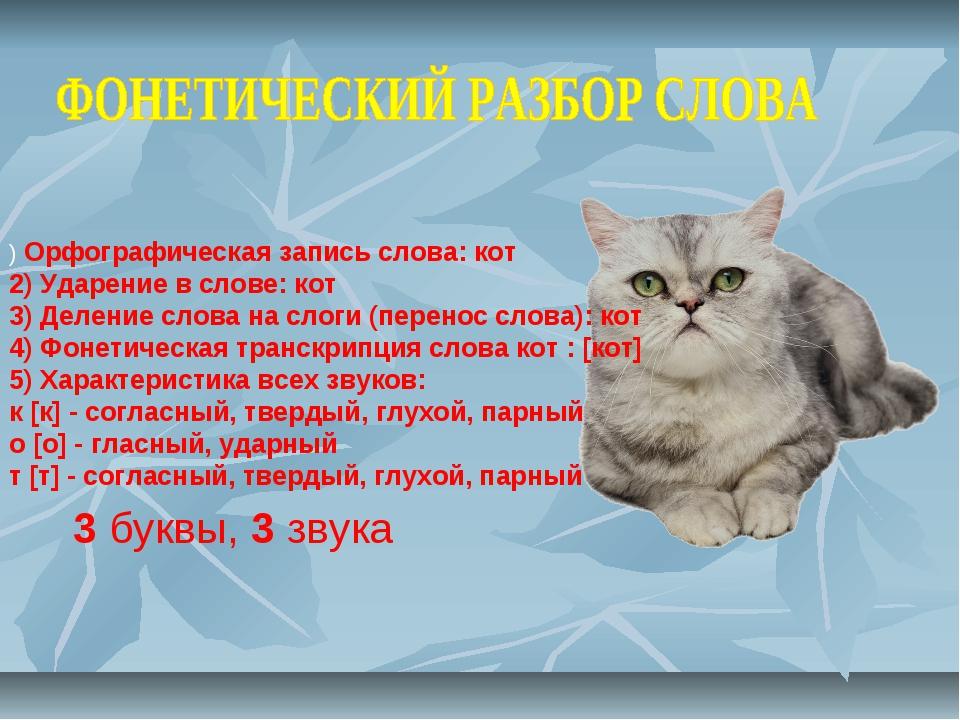 ) Орфографическая запись слова: кот 2) Ударение в слове: кот 3) Деление слова...