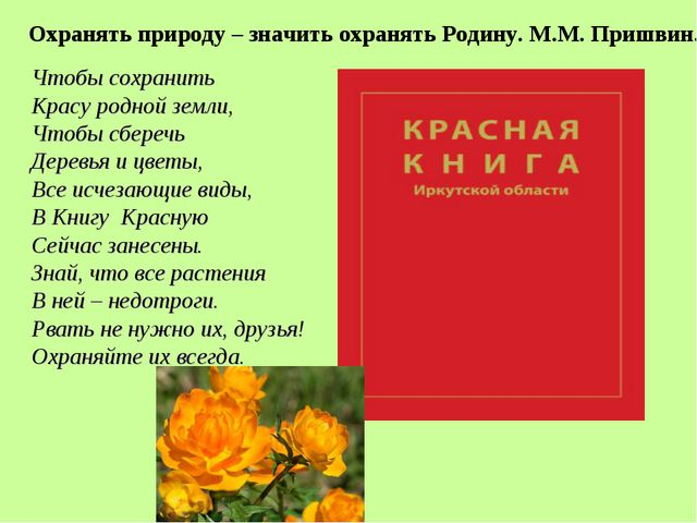 Чтобы сохранить Красу родной земли, Чтобы сберечь Деревья и цветы, Все исчеза...