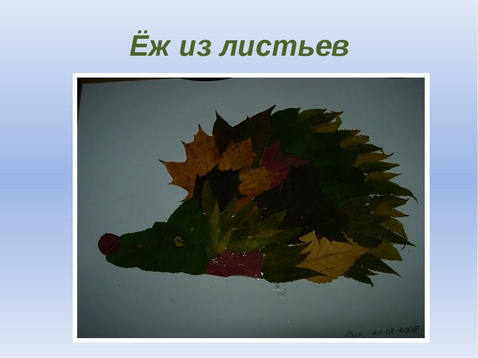 Ёж из листьев