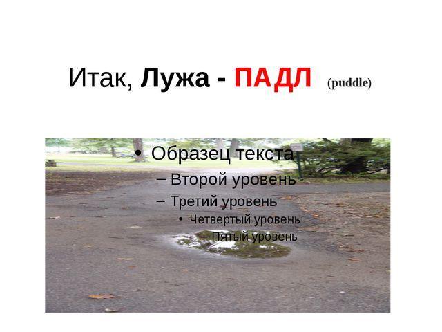 Итак, Лужа - ПАДЛ (puddle)