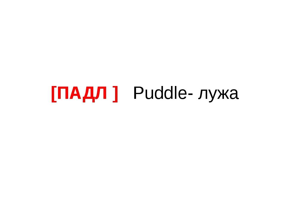 [ПАДЛ ] Puddle- лужа